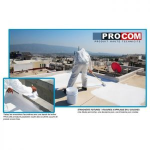 meilleure peinture de toiture
